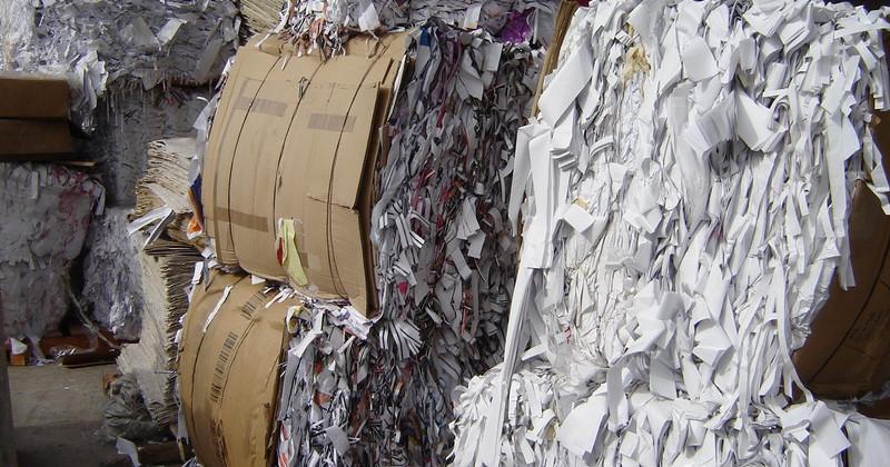 Plan de negocios de reciclaje